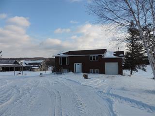 House for sale in Pontiac, Outaouais, 6810, Chemin  Hickey, 22300985 - Centris.ca