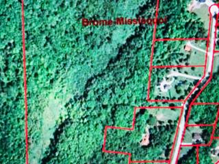 Terrain à vendre à Saint-Armand, Montérégie, Chemin  Pelletier Sud, 21703434 - Centris.ca