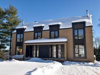 Condominium house for sale in Saint-Côme, Lanaudière, 33, Avenue des Oeuvres, 25991604 - Centris.ca
