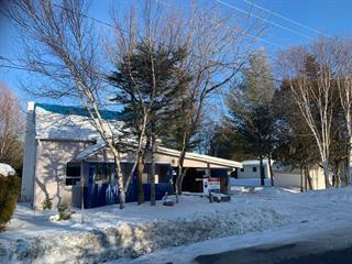 Maison à vendre à Lac-Mégantic, Estrie, 4826, Rue  Bonin, 25316871 - Centris.ca