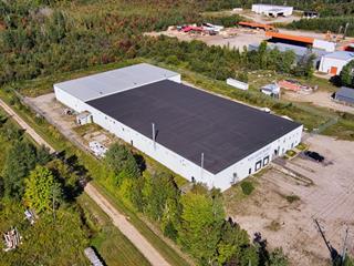 Bâtisse industrielle à louer à Ripon, Outaouais, 1267, Route  317, 18413500 - Centris.ca