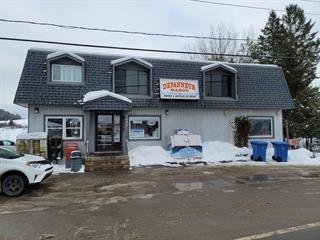 Bâtisse commerciale à vendre à Notre-Dame-de-la-Salette, Outaouais, 1692, Route  309, 26361740 - Centris.ca