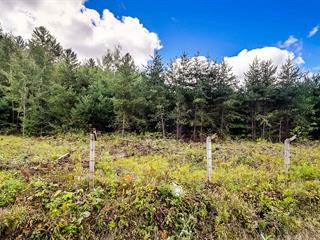 Lot for sale in Otter Lake, Outaouais, Route  303, 18475320 - Centris.ca