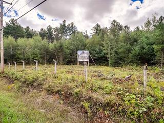 Lot for sale in Otter Lake, Outaouais, Route  303, 27014051 - Centris.ca