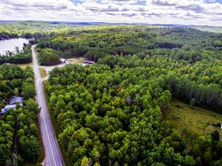 Lot for sale in Otter Lake, Outaouais, Route  303, 11484625 - Centris.ca