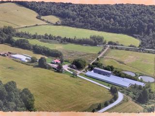 Terre à vendre à Danville, Estrie, 39, Chemin  Parenteau, 26285544 - Centris.ca