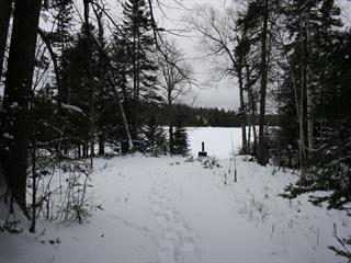 Terrain à vendre à Rivière-Rouge, Laurentides, Chemin du Lac-Paquet Ouest, 9143487 - Centris.ca