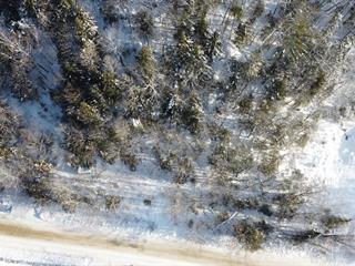 Terrain à vendre à Val-des-Monts, Outaouais, 145, Chemin du Lac-Clair, 13388290 - Centris.ca