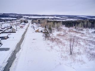 Terrain à vendre à East Broughton, Chaudière-Appalaches, Rue  Létourneau, 27092848 - Centris.ca