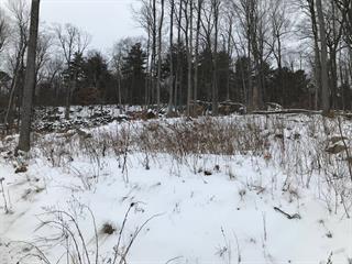 Land for sale in Montebello, Outaouais, 443, Chemin des Golfeurs, 24267938 - Centris.ca