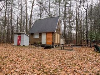 Cottage for sale in Mansfield-et-Pontefract, Outaouais, 25, Chemin  Pearson, 26351383 - Centris.ca