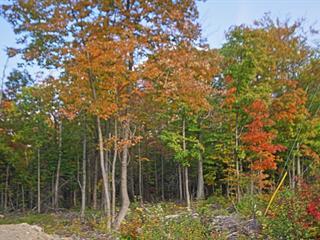 Terrain à vendre à Saint-Calixte, Lanaudière, Route  335, 24832174 - Centris.ca