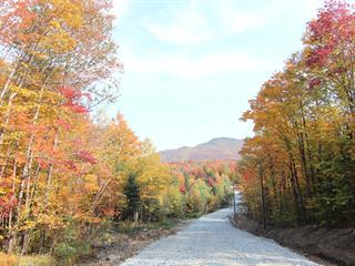Terrain à vendre à Eastman, Estrie, Chemin de la Montagne-Cachée, 12564720 - Centris.ca