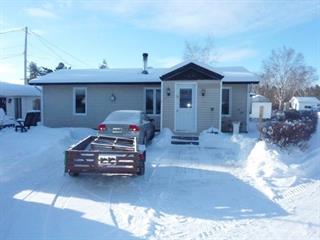 Maison à vendre à Dolbeau-Mistassini, Saguenay/Lac-Saint-Jean, 545, Rang  Saint-Louis, 13106571 - Centris.ca