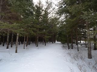 Terre à vendre à Notre-Dame-de-Pontmain, Laurentides, T, Chemin  Duciaume, 9553491 - Centris.ca