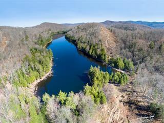 Terre à vendre à Mont-Tremblant, Laurentides, Chemin du Lac-Gélinas, 27651922 - Centris.ca