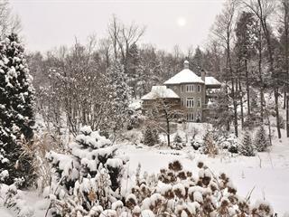 Maison à vendre à Chelsea, Outaouais, 32, Chemin  Keewatin, 24626846 - Centris.ca