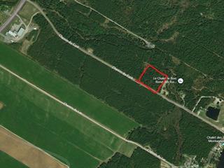 Lot for sale in Saint-Tite-des-Caps, Capitale-Nationale, Chemin du Curé, 28053888 - Centris.ca