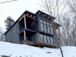Maison à vendre à La Conception, Laurentides, 210, Rue de l'Everest, 13800419 - Centris.ca