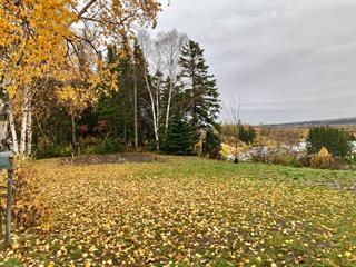 Lot for sale in Rivière-du-Loup, Bas-Saint-Laurent, 105, Rue  Hayward, 12044069 - Centris.ca