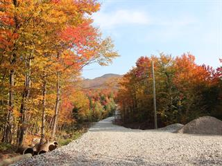 Terrain à vendre à Eastman, Estrie, Chemin de la Montagne-Cachée, 23247629 - Centris.ca