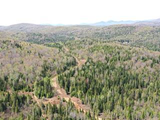 Terre à vendre à Sainte-Agathe-des-Monts, Laurentides, Chemin du P'tit-Bonheur, 27331569 - Centris.ca