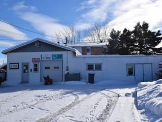 Bâtisse commerciale à vendre à Drummondville, Centre-du-Québec, 34, 121e Avenue, 18030761 - Centris.ca