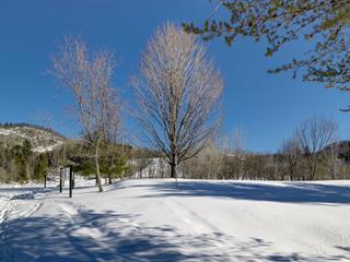 Terre à vendre à Piedmont, Laurentides, Chemin du Pont, 23496336 - Centris.ca