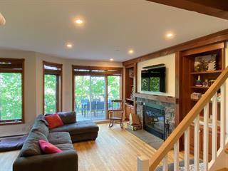 Condo / Apartment for rent in Mont-Tremblant, Laurentides, 165, Chemin de la Forêt, apt. 5, 25323684 - Centris.ca