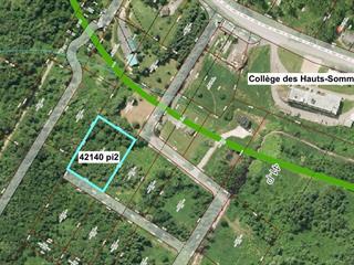 Lot for sale in Saint-Tite-des-Caps, Capitale-Nationale, 376, Avenue de la Montagne, 13207340 - Centris.ca