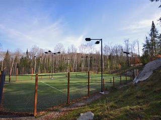 Terrain à vendre à Mont-Tremblant, Laurentides, Chemin  Cochrane, 20514613 - Centris.ca