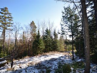 Lot for sale in Mont-Tremblant, Laurentides, Chemin  Killarney, 26816251 - Centris.ca