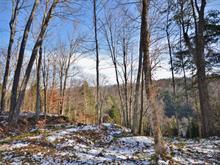 Terrain à vendre à Mont-Tremblant, Laurentides, Chemin  Cochrane, 11427224 - Centris.ca