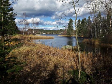 Lot for sale in Lac-Kénogami (Saguenay), Saguenay/Lac-Saint-Jean, Rue des Carouges, 24588039 - Centris.ca