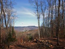 Terrain à vendre à Mont-Tremblant, Laurentides, Chemin des Amérindiens, 16078148 - Centris.ca