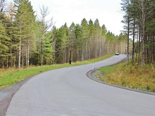 Lot for sale in Saint-Sauveur, Laurentides, Chemin des Basques, 26420121 - Centris.ca