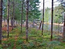 Terrain à vendre à Saint-Sauveur, Laurentides, Chemin des Basques, 13434235 - Centris.ca