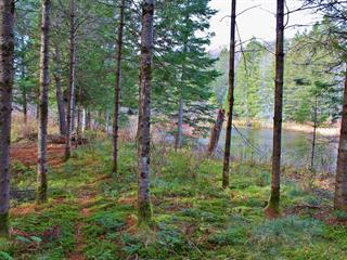 Lot for sale in Saint-Sauveur, Laurentides, Chemin des Basques, 13434235 - Centris.ca