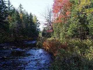 Lot for sale in Sainte-Cécile-de-Whitton, Estrie, 135, Chemin de la Rivière-Madisson, 20802112 - Centris.ca