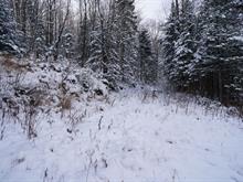 Terrain à vendre à Saint-Herménégilde, Estrie, Chemin du Père-Roy, 26172496 - Centris.ca