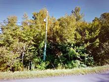 Lot for sale in Saint-Apollinaire, Chaudière-Appalaches, Chemin de la Chute, 26999276 - Centris.ca