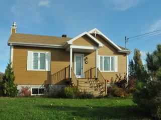 Maison à vendre à Petite-Rivière-Saint-François, Capitale-Nationale, 5, Rue  Dufour, 24108849 - Centris.ca