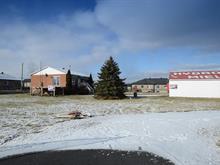 Terrain à vendre à Beauharnois, Montérégie, 397, Chemin du Canal, 11197107 - Centris.ca