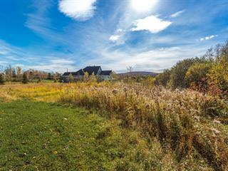 Terrain à vendre à Lac-Brome, Montérégie, Chemin  Papineau, 10098526 - Centris.ca