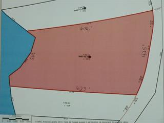 Lot for sale in Ferme-Neuve, Laurentides, Chemin  Nibi, 21333910 - Centris.ca