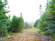 Terrain à vendre à Saint-Gabriel-de-Valcartier, Capitale-Nationale, 5e Avenue, 9945675 - Centris.ca