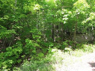 Terrain à vendre à Saint-Donat (Lanaudière), Lanaudière, Chemin du Domaine-de-l'Escapade, 28410144 - Centris.ca