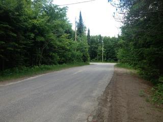 Lot for sale in Lac-Supérieur, Laurentides, Chemin de la Montagne, 13865786 - Centris.ca