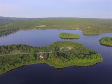 Terrain à vendre à Lamarche, Saguenay/Lac-Saint-Jean, 4, Rue du Domaine, 21685718 - Centris