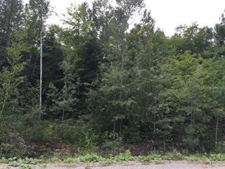 Lot for sale in L'Ange-Gardien (Outaouais), Outaouais, Chemin de la Topaze, 22173219 - Centris.ca